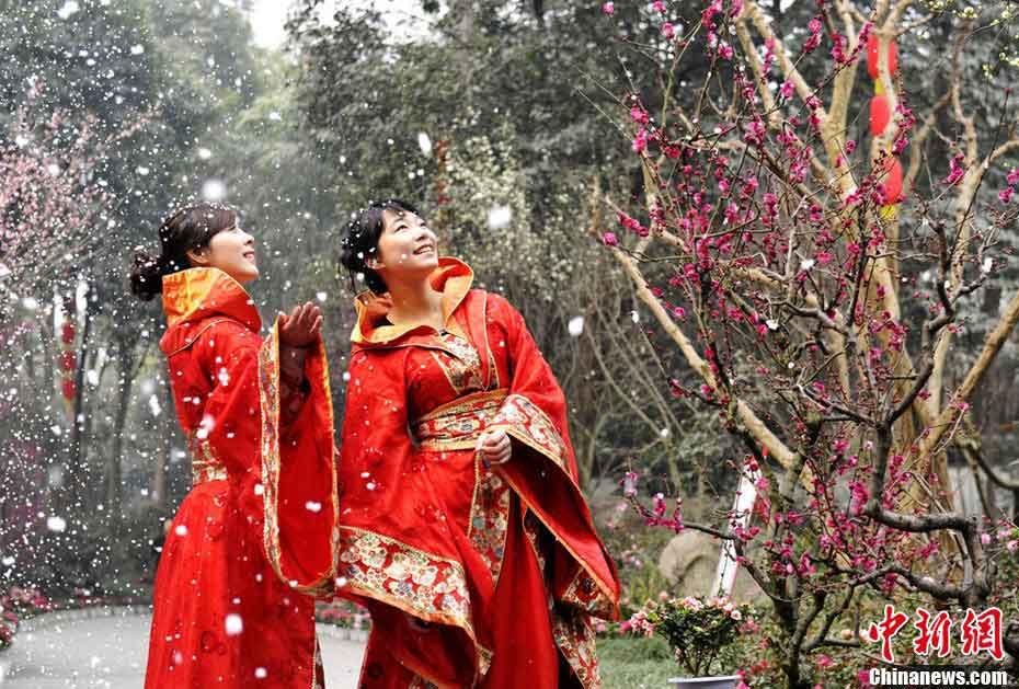 Visitors wearing traditional Chinese garments enjoy blooming plum blossoms at Du Fu Thatched Cottage in Chengdu, capital city of southwest China's Sichuan province on Feb. 2, 2012. (CNSPHOTO/ An Yuan)