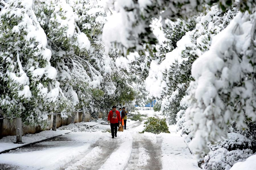 Citizens walk on a snowy road after snowfall in Hefei, capital of east China's Anhui Province, Feb. 19, 2013. A snowstorm hit Anhui province Tuesday morning and the local meteorological bureau has issued a yellow alert for the snowfall. (Xinhua/Liu Junxi)