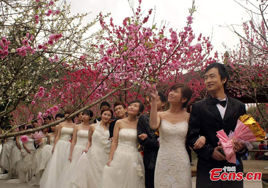 The Fourth Beixi Peach Blossom Culture and Tourism Festival opened at the Beixi Village of Yongchun in Southeast China's Fujian Province on February 20, 2013. (CNS/Su Qiaofeng)