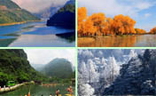 Top 12 picturesque destinations of forest