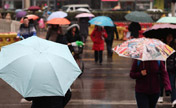 Year's first rainfall for Beijing