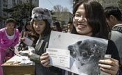 Students protest Canada's annual seal hunt