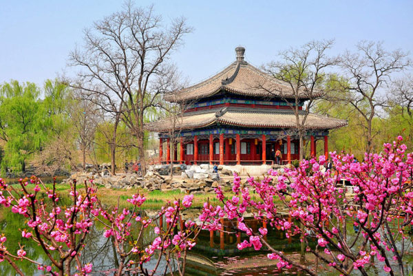 Spring at the Old Summer Palace