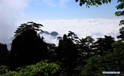 Sea of clouds at Mount Huangshan scenic spot, E China