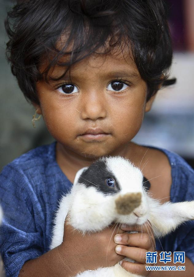 A child holds a rabbit in a shelter for disaster victims during the tsunami in Indonesia, Dec. 12, 2006. ( Photo/Xinhua)