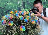 Colorful roses displayed at 9th China Int'l Garden Expo