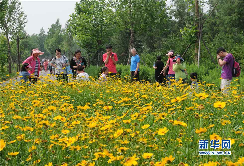 Visitors play in the Nanhaizi Park. (Photo/Xinhua)