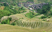 Terraced fields in southwest China