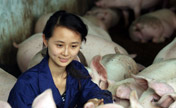 Chinese graduates' unconventional jobs