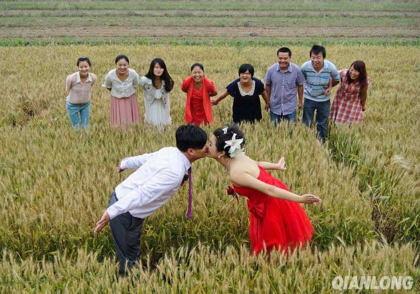 A young couple in Hancunhe Village of Beijing's Fangshan District tied the knot in the wheat field in front of their house, saying that they hope their action can help promote a frugal and green lifestyle. (Photo: china.org.cn/Qianlong)