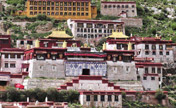 Photos: