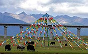 Picturesque Damxung County, Tibet