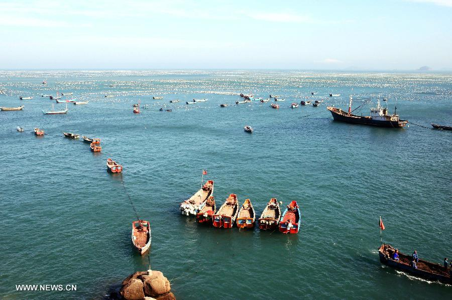 Villagers at sea prepare to harvest mussels in Gouqi Township of Shengsi County in Zhoushan City, east China's Zhejiang Province, July 23, 2013. Shengsi County had more than 1,333 hectares of water areas to breed mussels with a production value topping 100 million yuan (15.47 million US dollars) in 2012. The mussel breeding has become a main source of income for local people. (Xinhua/Xu Yu)