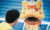 Post-90s students in lion dance troupe