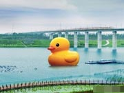18-meter-high Rubber Duck ready to meet Beijingers