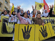 Morsi's supporters protest against Egyptian military in Turkey