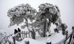Rime scenery in Mount Huangshan