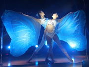 China's national pole dancing to play 'The Butterfly Love'