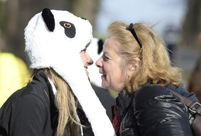 Belgians warmly welcome arrival of China's giant pandas