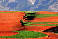 Red terraced fields in Dongchuan of Yunnan