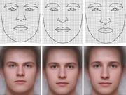 Man's face betrays his IQ: research confirmed