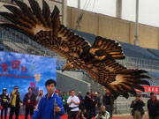 2014 Int'l Kite Festival kicks off in Beijing